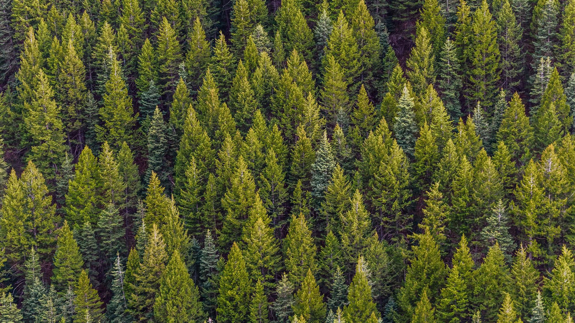 Miljø står på dagsordenen hos Loe Rørprodukter